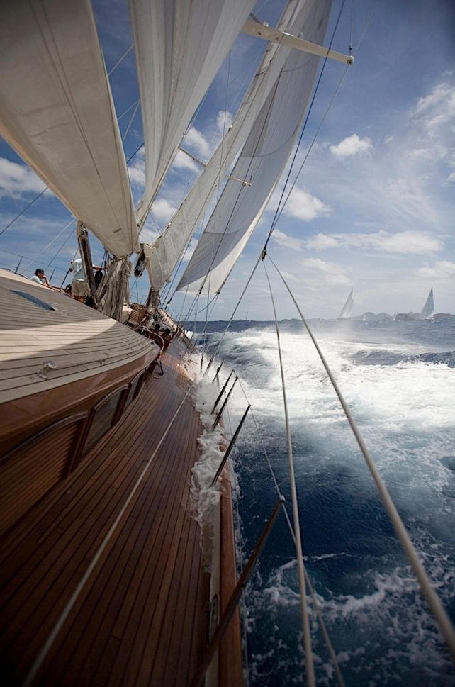 Over Sealion Yachts